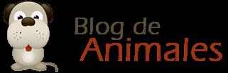 Blog de Animales